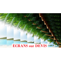 Ecrans de Projection sur Devis