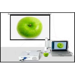 Visualiseurs Compatibles Vidéoprojecteur